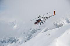 © Tristan Shu pour pure ski company421