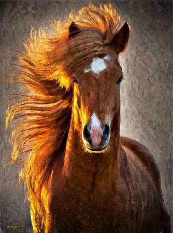 Horse in Wind