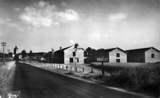 La longue logne droite de la route de LOns