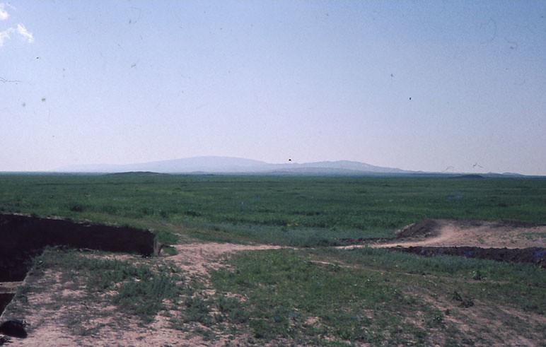 Yarim Tepe 1974 Turchia