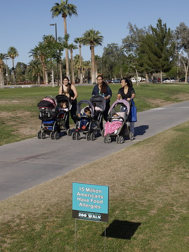 AFAA Zoo Walk for Food Allergy & Anaphylaxis Tucson, Arizona 2014 | by Distraction Limited