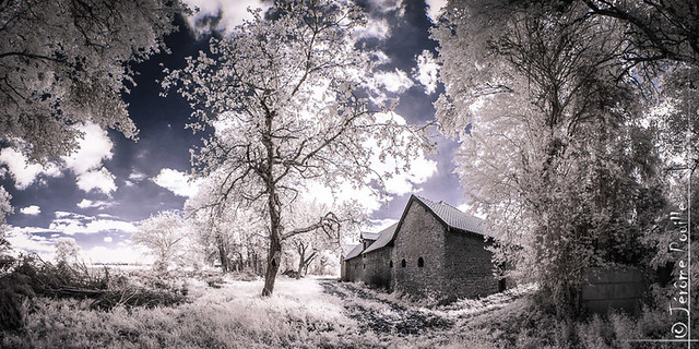The last house on the right - INFRARED