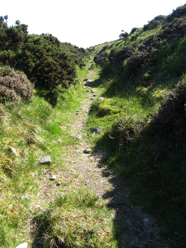 Old peat cutters track to Raybarrow Pool