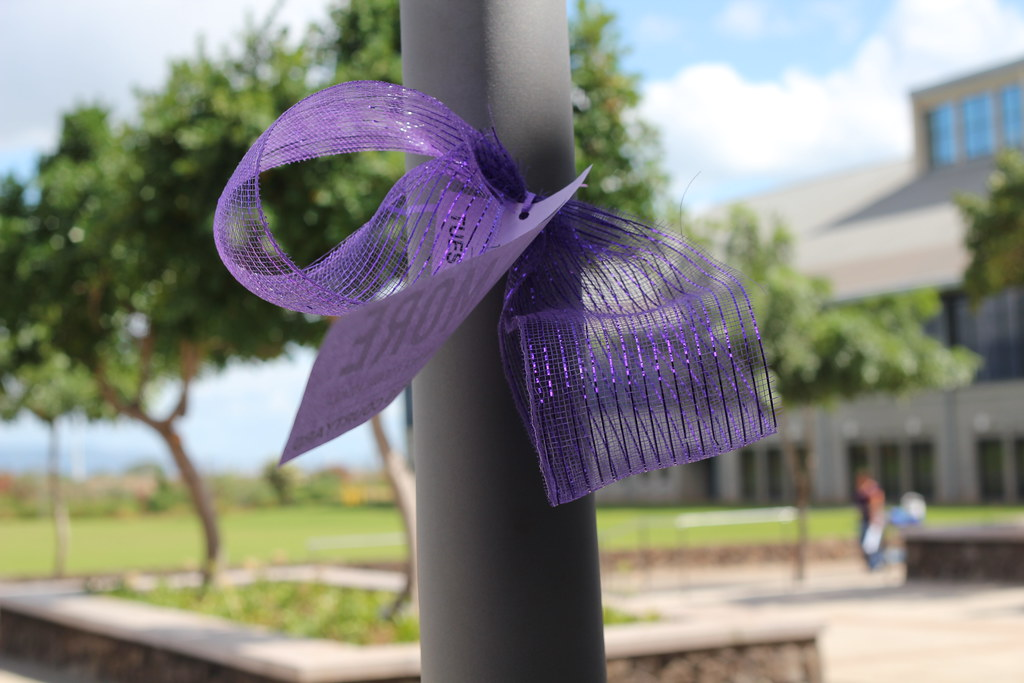 NO MORE: Domestic Violence Awareness event | University of Hawai'i–West  O'ahu | Flickr