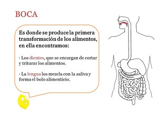 Diapositiva1 | by carmenh92