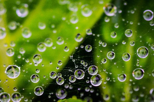 Planets of droplets | by aotaro