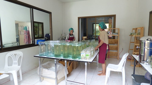 Koh Samui Coconut oil factory