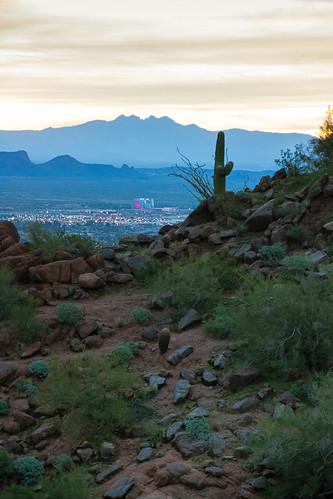landscape desert winter outdoors arizona saguaro phoenix camelbackmountain sunrise paradisevalley unitedstates us