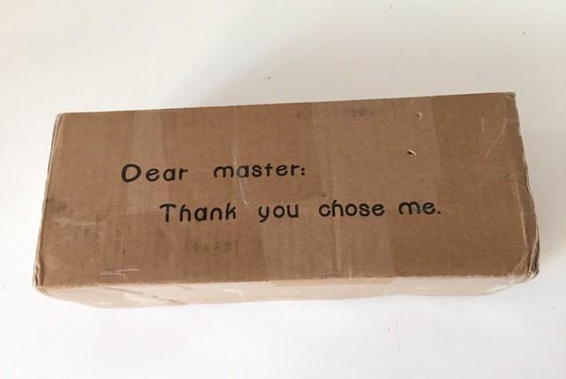 The fake blythe's box