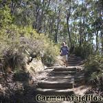 Viajefilos en Australia. Blue Mountains 064