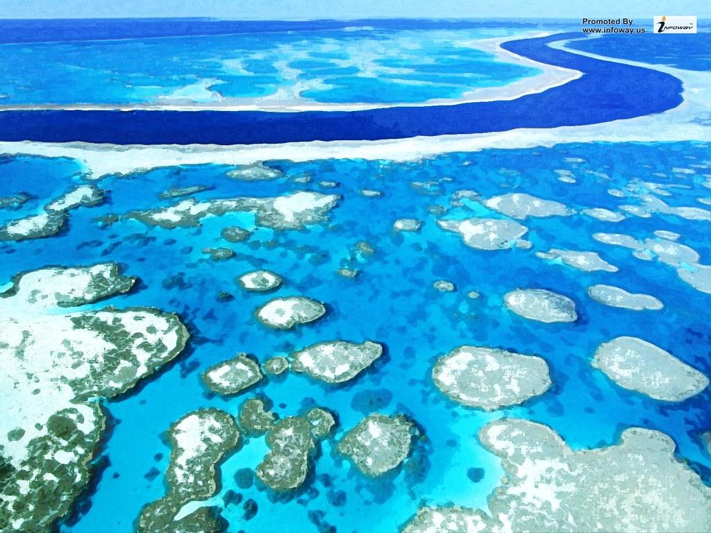 Great Barrier Reef Wallpaper Great Barrier Reef Wallpaper