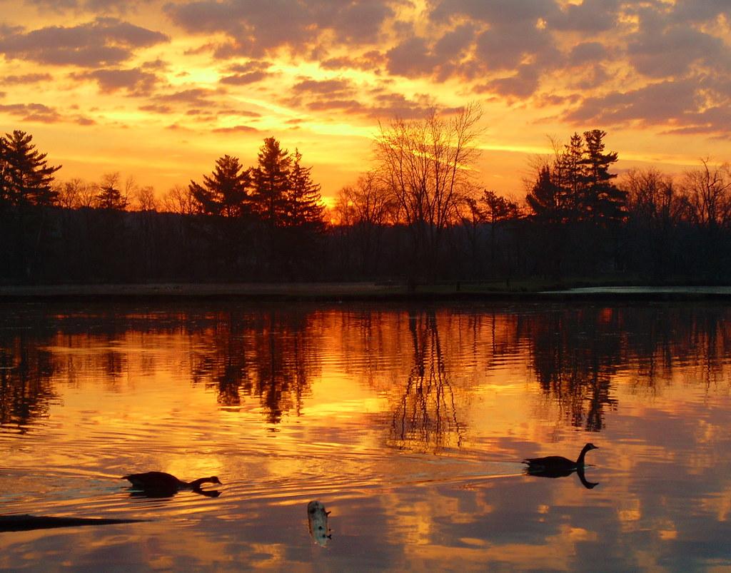 Sunrise Four Lakes Forest Preserve
