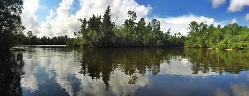 morning river fishing kayak florida panoramic fl milton blackwater hdr iphone riverlife snapseed