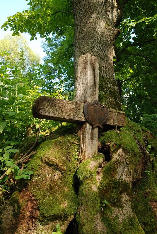 cmentarz_lupkow_krzyz_w_drzewie