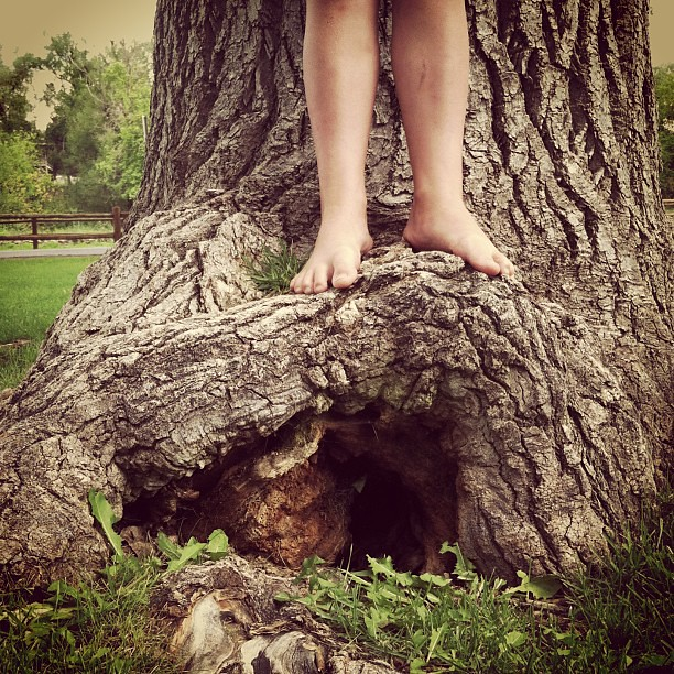 Anna found the door to a fairy world inside a humongous tree. :)