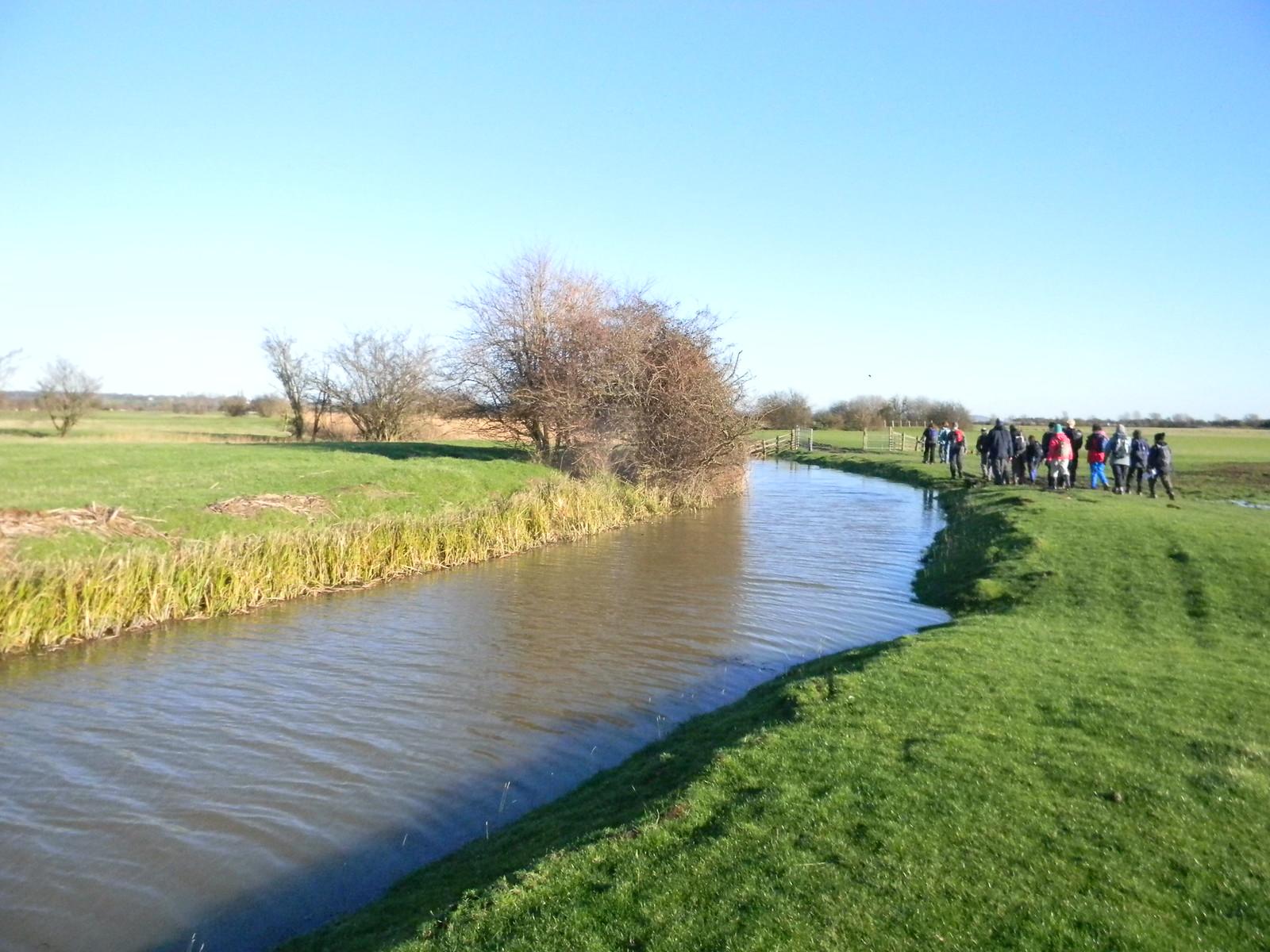 Along a drainage ditch Appledore Short Circular