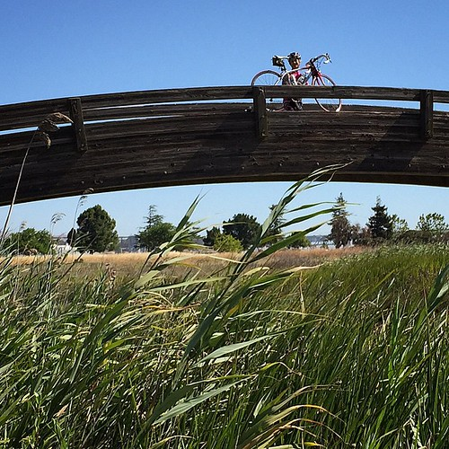 @4tcakes2 Tricia on Arch Bridge on the Pickeleweed trail near  Granger Park in Martinez because that's where we're riding bikes today. | by ccorlew