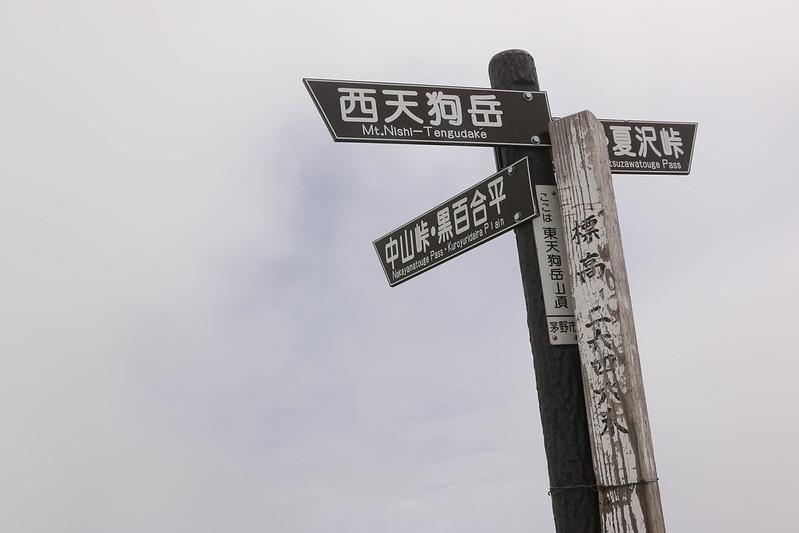 2014-06-29_00456_天狗岳.jpg