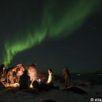 Viajefilos en Tromso, Auroras Boreales 023