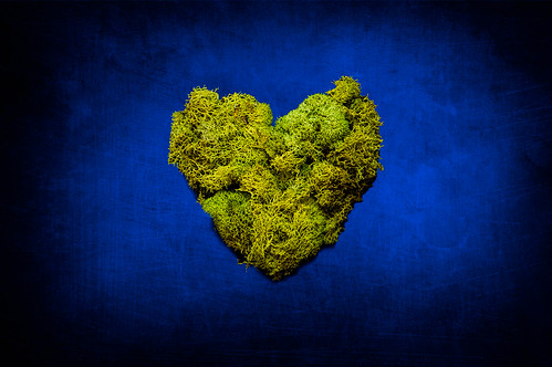 Mossy Heart | by Nate_Martin