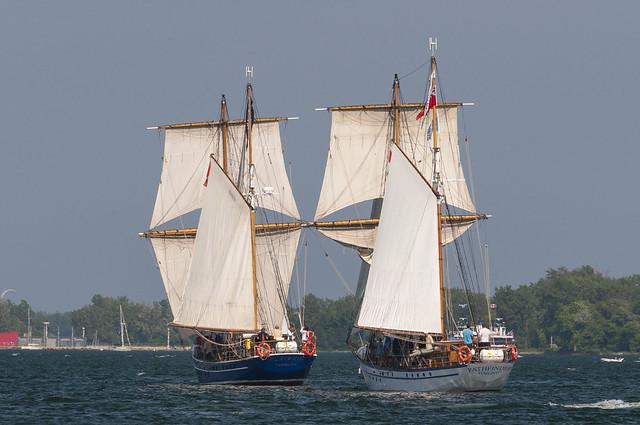 Tall Ships 2013-7708