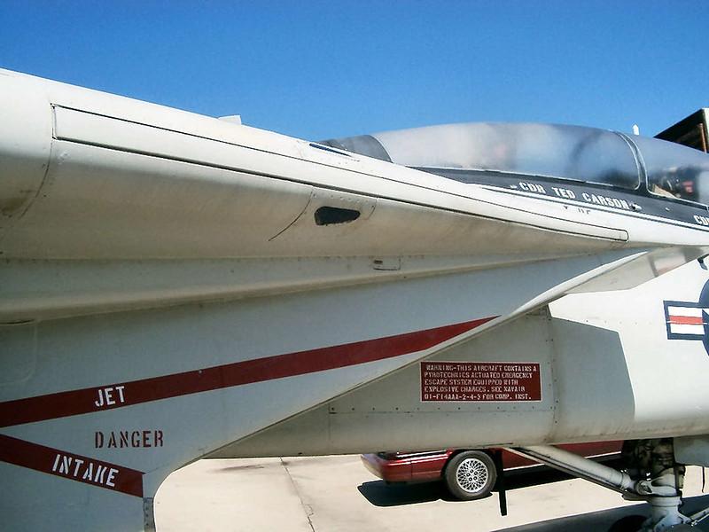 F-14 The Tomcat (5)
