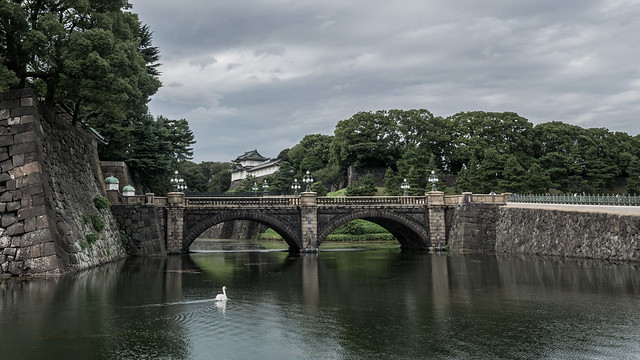 Imperial Palace with Swan