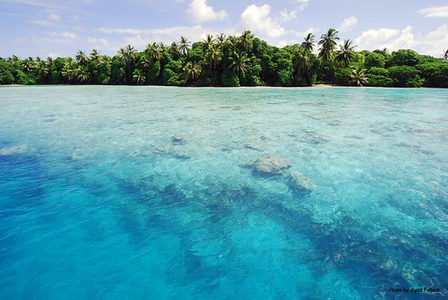 Palmyra Atoll National Wildlife Refuge is home to shallow water flats that serve as nursery grounds for many marine species.  Photo Credit: Kydd Pollock | by USFWS Pacific