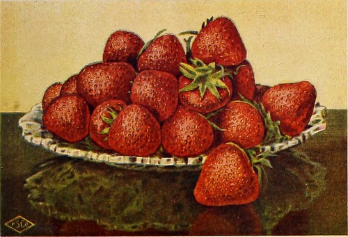 "Image from page 320 of ""Better fruit"" 