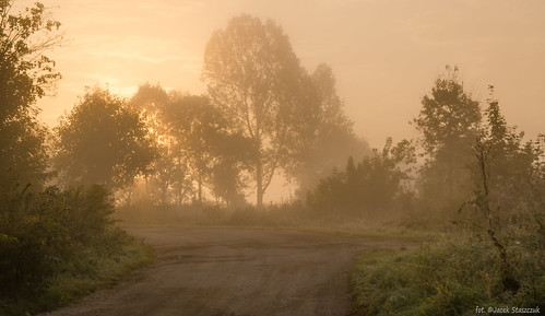 autumn sunset orange tree nature fog landscape village poland polska lightshadow poranek jesień przyroda mgła mornig drzewa krajobraz wieś lowersilesia sigma175028 nikond7000 sulików studniska
