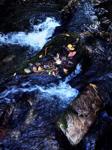 creek small falls lakejamesstateparkpaddyscreek uploaded:by=flickrmobile flickriosapp:filter=nofilter