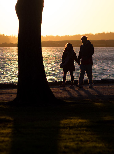 Tree and couple silhouette   by neekoh.fi