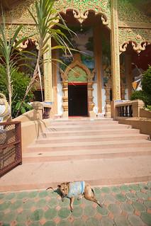 Wat Mahawan | by Andrea Schaffer