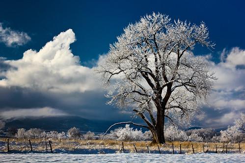 winter 3 colorado rockymountains february cedaredge grandmesa rockpaper cottenwood coth5 davidleeshort sunrays5