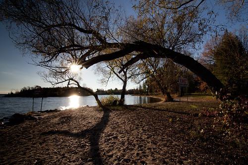 autumn trees fall landscape silhouettes sunburst ottawariver arching wideanglelens arnprior riverscape madawaskariver
