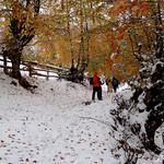 Cuevas - Cuevas (16-11-2013)