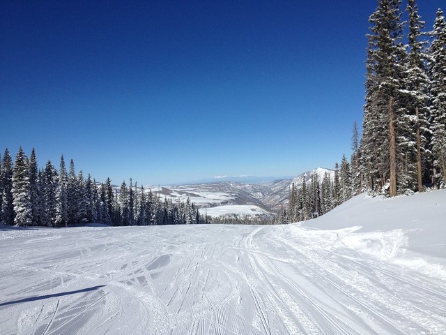 日, 2014-02-02 12:28 - Marmot Trail