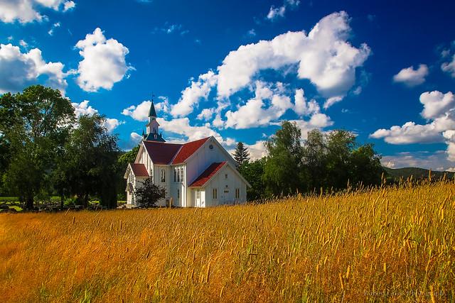 Norwegian Summer Blue & Gold