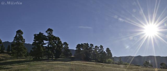 Sol ReventON Trail