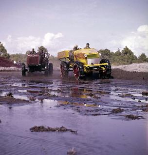 Inaugural Swamp Buggy Jubilee at the Sarasota Fairgrounds