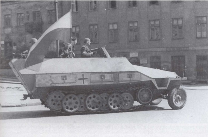 SdKfz 251 (4)