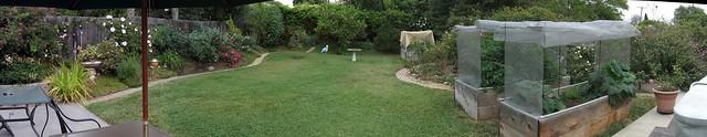 IMG_9953_11 130602 Goleta backyard garden floating umbrella ICE rm stitch99