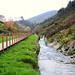 © Passadiço Junto ao Rio Simão - Path By The River 2010