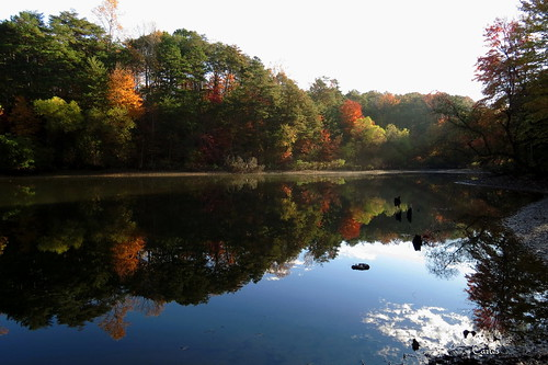 morning november trees lake reflection fall sunrise outdoors pond northcarolina greensboro