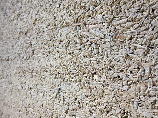 Hempcrete wall at CDL Green Gallery | by Jnzl's Photos