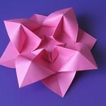 Fiore bombato - Curved flower
