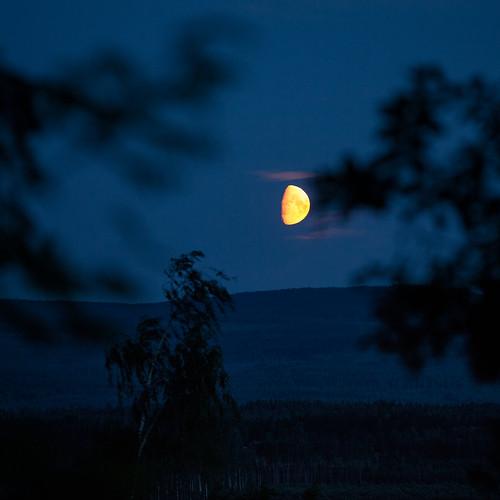 summer moon sweden sverige dalarna måne canoneos5dmarkii plintsberg dalarnaslän canonef70200mmf28lisiiusm
