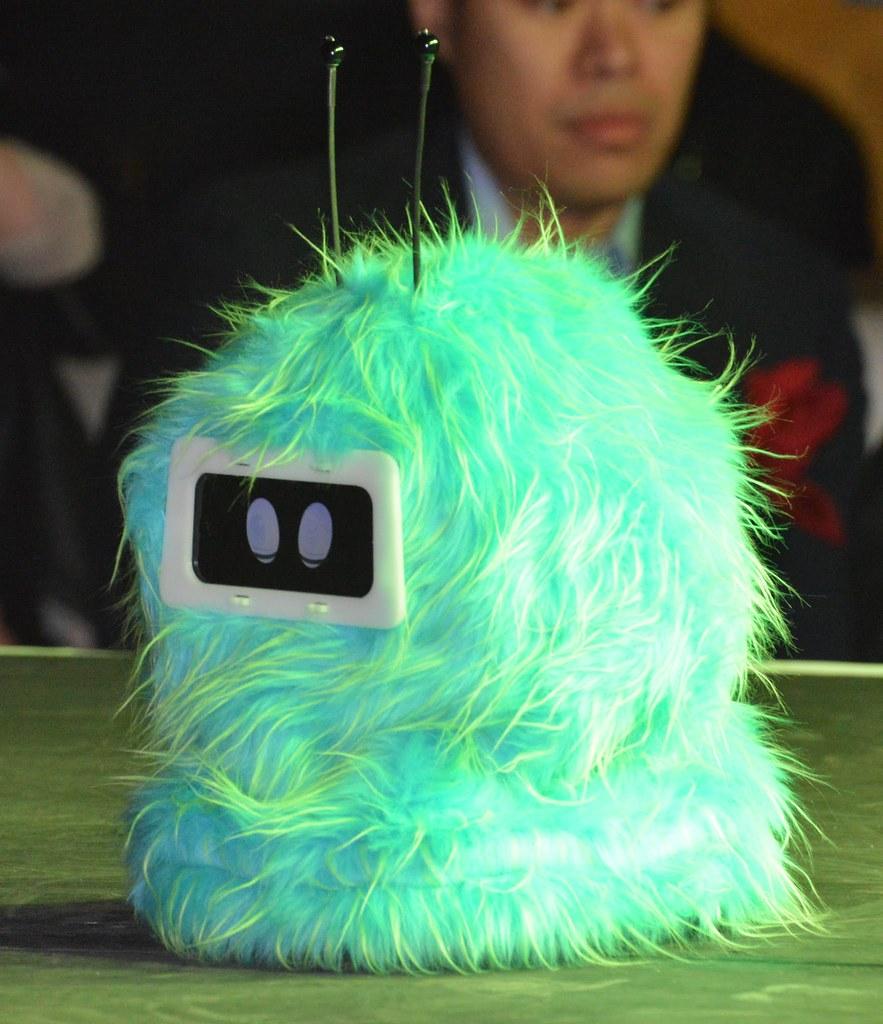 Living in Digital Times 2014 Robotics on the Runway 18
