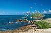 Aruba, foto: Daniel Linnert