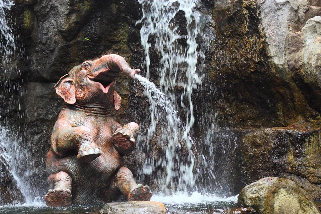 Elephant on Disneyland Jungle Cruise
